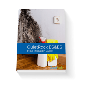Mold Insulation Guide